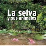 DIBUJOS ANIMALES SELVA